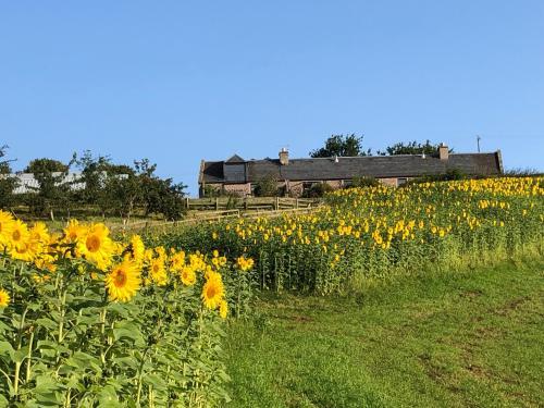 Garden Bank Cottage
