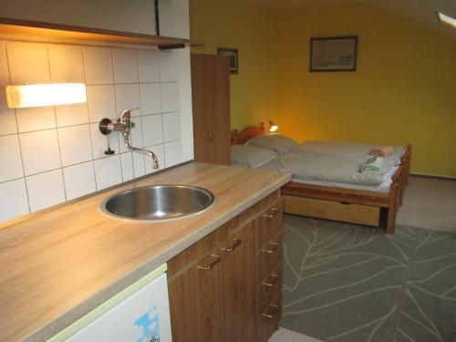 A kitchen or kitchenette at Penzion U Holubů Nový Jičín