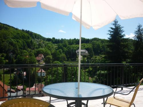 Ein Balkon oder eine Terrasse in der Unterkunft Hotel Waldhaus-Hutzelhöh