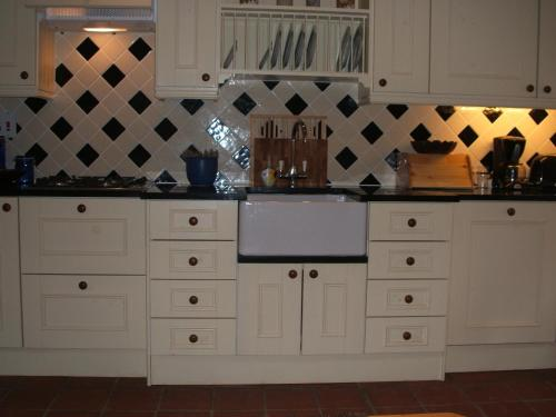 A kitchen or kitchenette at Orchid house