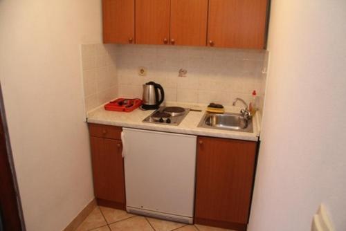 Kuhinja ili čajna kuhinja u objektu Family apartment Pikolo