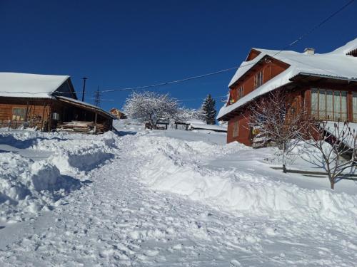 Na gorbochku u Natali зимой