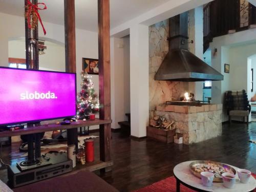 TV i/ili multimedijalni sistem u objektu Ljubičin Konak