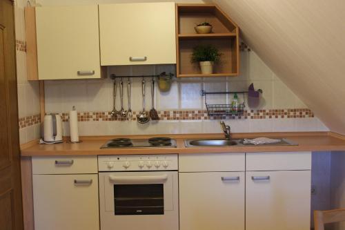 Küche/Küchenzeile in der Unterkunft Ferienhof Pankalla
