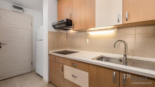 A kitchen or kitchenette at Rona Apartments Volta