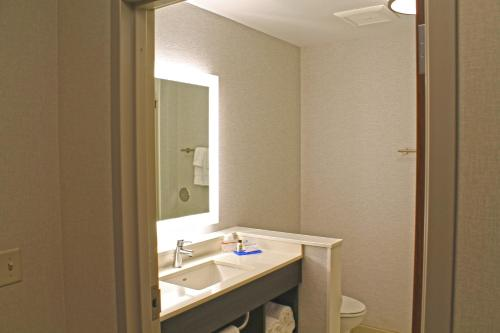 A bathroom at Holiday Inn Express & Suites - St. Louis South - I-55