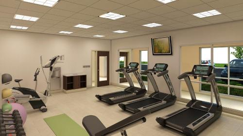The fitness center and/or fitness facilities at Holiday Inn Express & Suites - St. Louis South - I-55