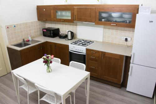 Кухня или мини-кухня в Stupkova 2 Apartmán