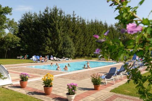 Der Swimmingpool an oder in der Nähe von Gasthof Zum Lindenhof