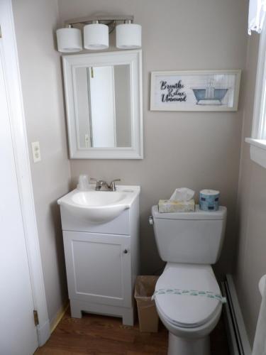 A bathroom at Mount Blue Motel