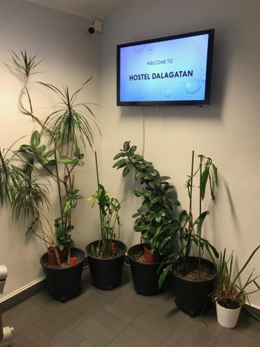 En tv och/eller ett underhållningssystem på Hostel Dalagatan