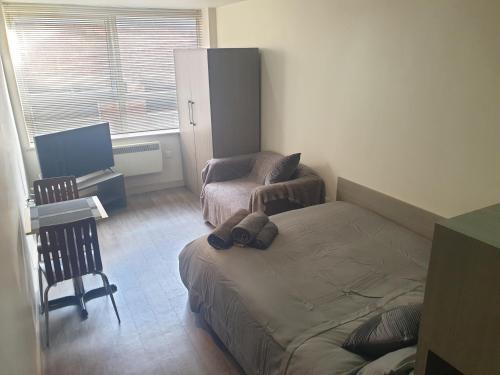FG Studio Apartments Lunar House Apt 9