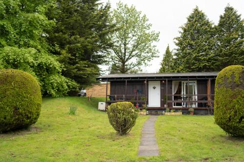 Catkin Lodge set in a Beautiful Woodland Holiday Park