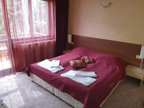 Ліжко або ліжка в номері Iglika Bansko