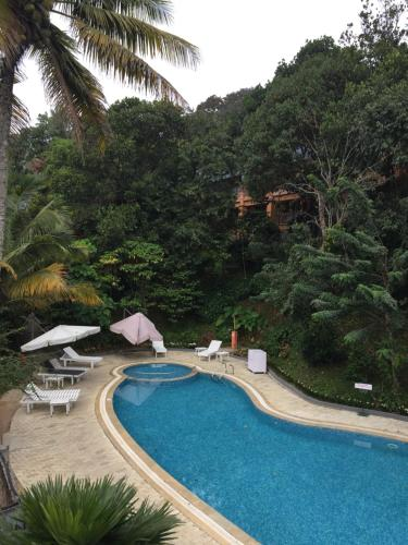 A view of the pool at Abad Green Forest Thekkady or nearby