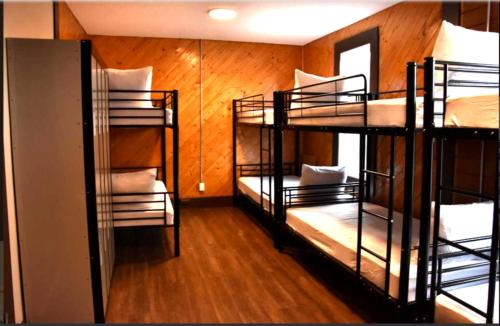 A bunk bed or bunk beds in a room at Canmore Hotel Hostel