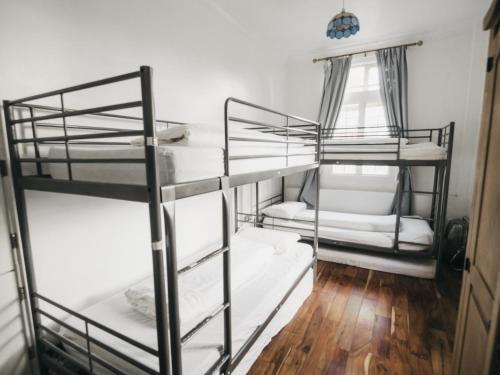 A bunk bed or bunk beds in a room at The Walrus Bar and Hostel