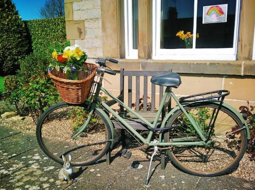 Biking at or in the surroundings of Carlton Lodge