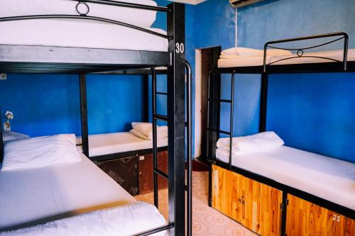 A bunk bed or bunk beds in a room at Vietnam Backpacker Hostels - Hue