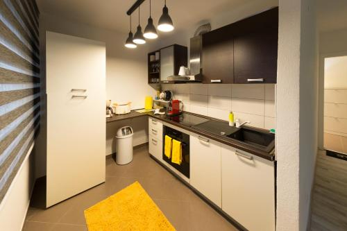 A kitchen or kitchenette at Apartman Laudon