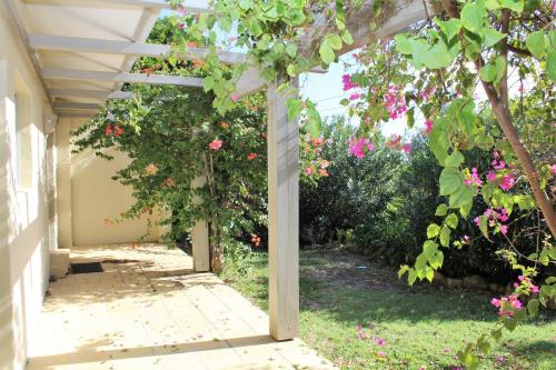 A garden outside BELLISSIMO
