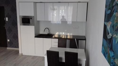 A kitchen or kitchenette at Apartament LUX w centrum Konina