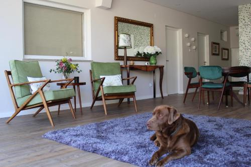 Pet or pets staying with guests at Casal da Viúva
