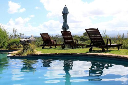 The swimming pool at or close to Fynbos Ridge Country House & Cottages