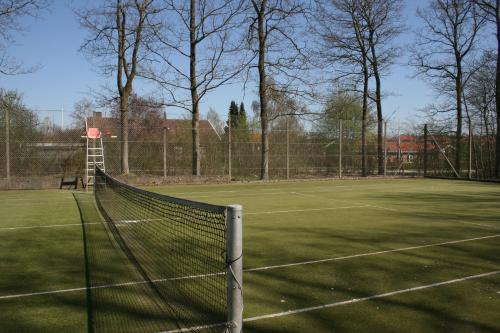 Tennis and/or squash facilities at Skanderborg Park or nearby