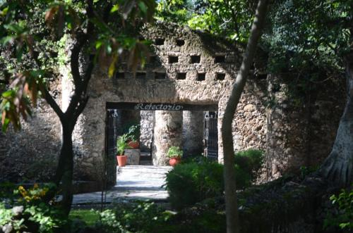 A garden outside Mision Conca