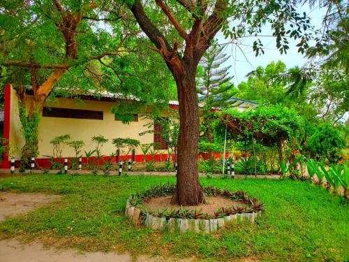 En have udenfor Nilaveli Crystal Blue Hotel