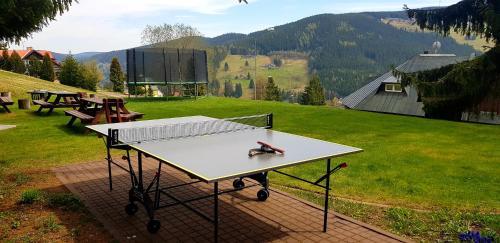 Stolní tenis v ubytování Hotel Děvín nebo okolí