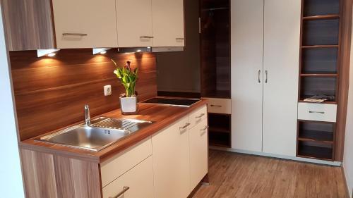 Küche/Küchenzeile in der Unterkunft Central Hotel-Apart München
