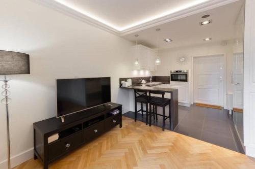 TV a/nebo společenská místnost v ubytování Apartamenty-MI Crystal
