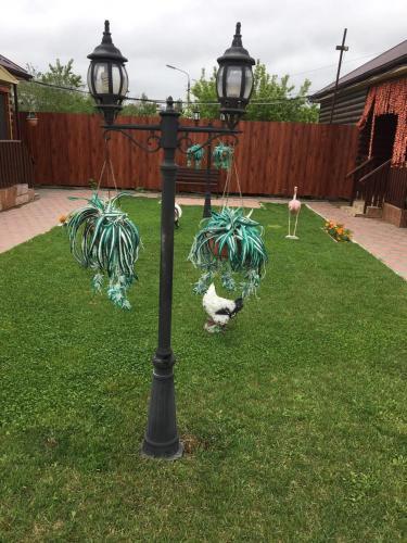 A garden outside Hotel Almaz