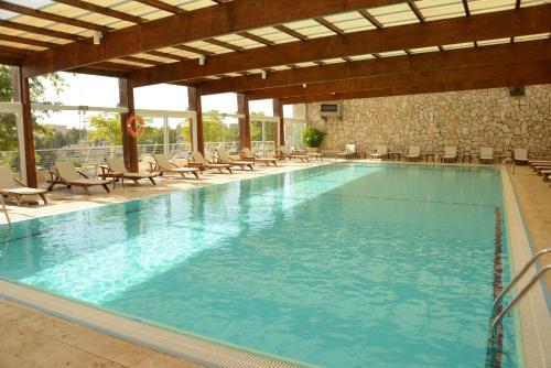 בריכת השחייה שנמצאת ב-ישרוטל פונדק רמון או באזור
