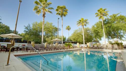 The swimming pool at or near Galleria Palms Orlando