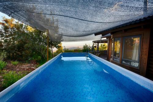 בריכת השחייה שנמצאת ב-גן המלכים או באזור