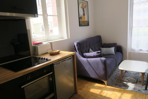 A kitchen or kitchenette at appartement dans villa cabourgeaise