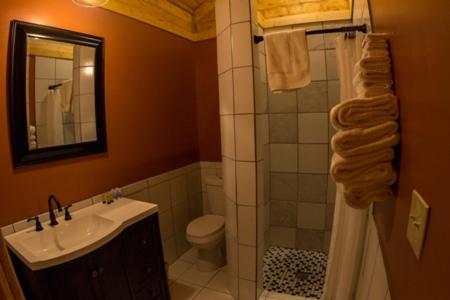 A bathroom at Denali Tri-Valley Cabins