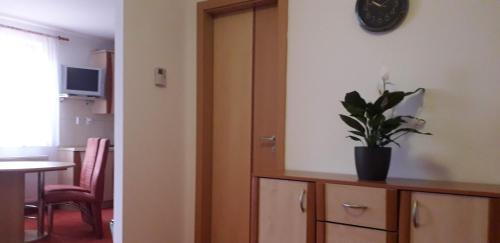 TV a/nebo společenská místnost v ubytování Apartmán McVitek