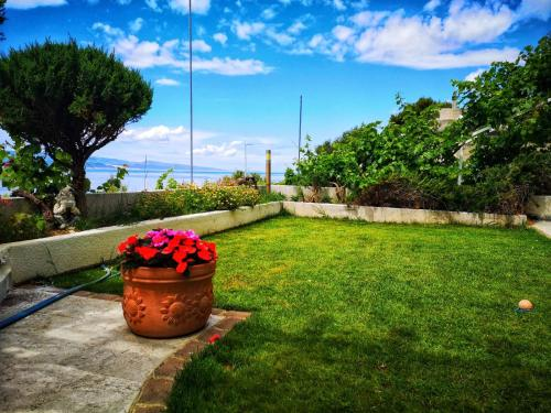 Vrt u objektu Apartments Fani