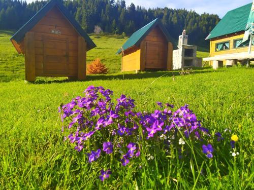 Een tuin van Etno Selo Kolibe Damjanovića -Bjelasica