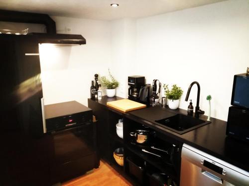 A kitchen or kitchenette at Villa Blankenberge