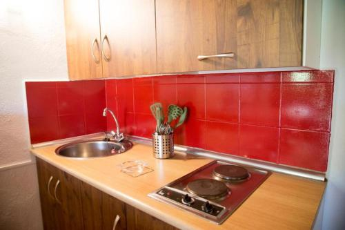 A kitchen or kitchenette at Complejo Roma