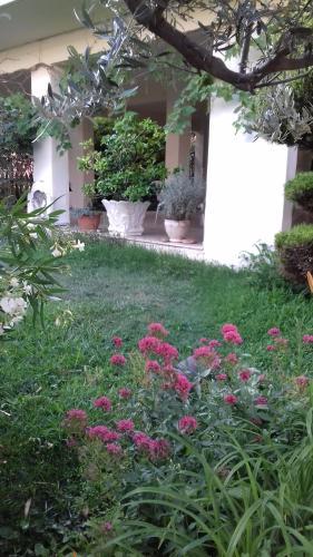 A garden outside HILI RESORT LUXURIOUS SEASIDE APARTMENT