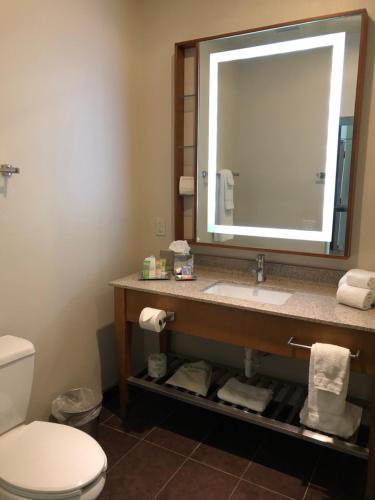 A bathroom at Wyndham Garden River Walk Museum Reach
