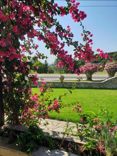 A garden outside Hotel Ermioni