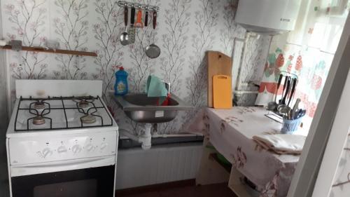 Кухня или мини-кухня в Guest House Bober