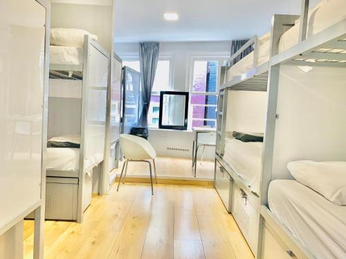 A bunk bed or bunk beds in a room at The White Tulip Hostel